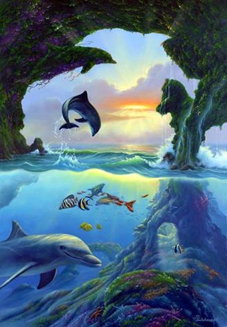 7 Dolphins