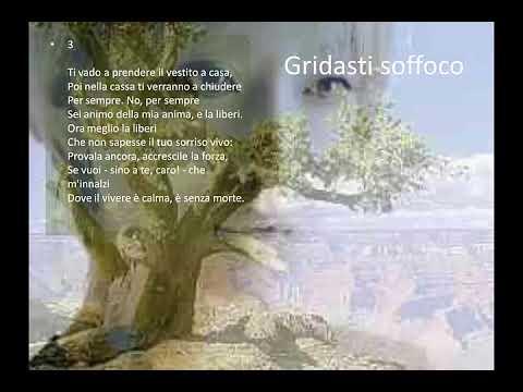Gridasti soffoco di Giuseppe Ungaretti