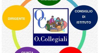org_collegiali