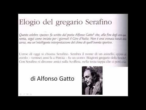 Elogio del gregario Serafino di Alfonso Gatto