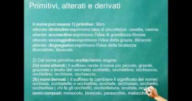 Il lessico: i paronimi gli alterati e i derivati
