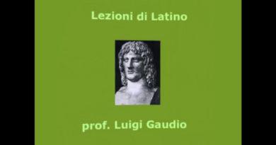 Il pronome relativo e la proposizione relativa latina