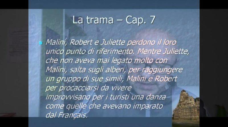Amata per caso di Stefano Zecchi – Luigi Gaudio