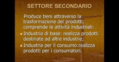 Energia e industria  Il settore secondario