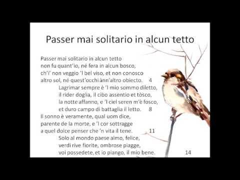 Passer mai solitario in alcun tetto di Petrarca