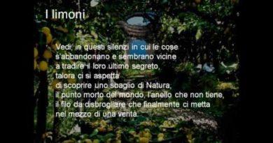 I limoni di Eugenio Montale