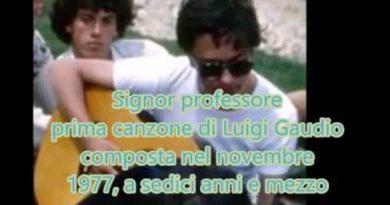 Signor professore di Luigi Gaudio