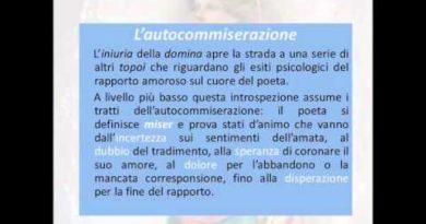 I caratteri dell'elegia a Roma