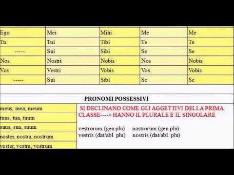 Aggettivi possessivi femminili presente indicativo sum e possum congiunzioni coordinanti