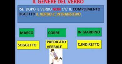 Funzione transitiva e funzione intransitiva