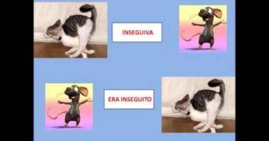 Verbi attivi e verbi passivi