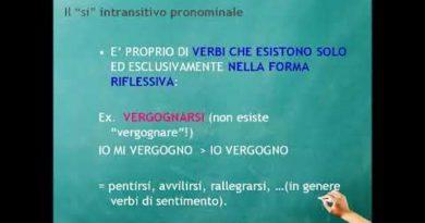 La forma pronominale del verbo