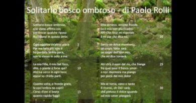 Solitario bosco ombroso di Paolo Rolli