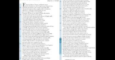 La morte di Patroclo Iliade 16 vv. 783-863