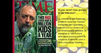 Il dibattito sugli OGM