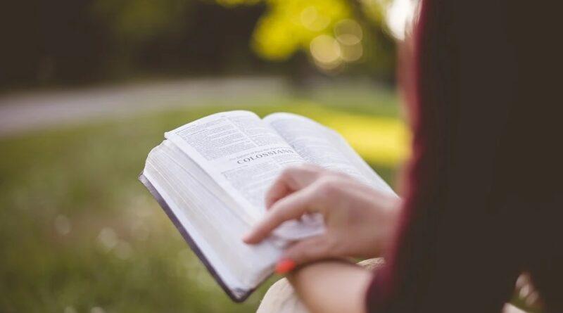 libro studiare